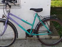 Bicicleta damă germană