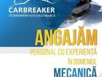 Angajam mecanic auto / ajutor mecanic