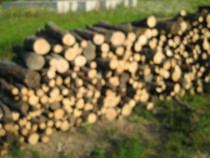 Lemn foc fag si carpen Bucuresti Ilfov Prahova