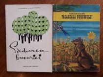 Padurea bucuriei + Pacaleala bursucului / R7P1F