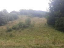 Teren Valea Draganului 3564mp