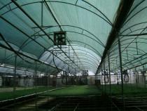 Umbrire plante / protectie antivant / densitate 90g/m2
