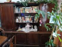 Biblioteca stil Lengyel