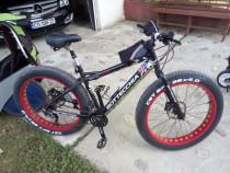 Bicicleta Fatbike bottechia