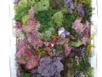 Tablou licheni 'Primavara in padure' 33 x 27 cm