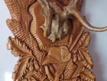 Coarne cerb pe panoplie din lemn de tei