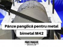 Panza fierastrau banzic panglica, MASTER 2450x27x6/10
