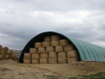 Cort Agricol