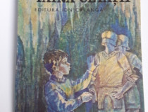 Carte pentru copii taina cetatii dorin almasan