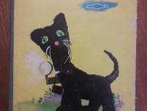 Foto Miau - Carte cartonata IPBT / R6P2S