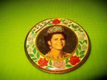 9681-Insigna vintage Printesa germana- Pt. ingrijirea casei.