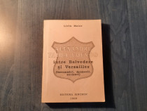 Alexandru Vaida Voievod intre Belvedere si Versailles LMaior