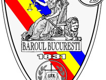 Avocat Drept Penal București Vulvoi Patrice