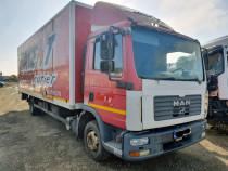 Flota camioane MAN TGL