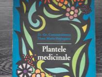 Plante medicinale gr constantinescu