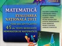 V. Gornoava- Matematica. Evaluarea nationala 2011 cls.VIII