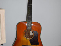 Chitară acustică Walden (lemn masiv - 3 ani garanție)