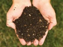 Îngrășământ organic la sac