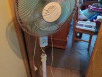 Ventilator cu picior pe roti
