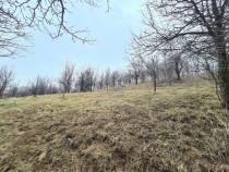 Teren 1802 mp in Breaza,deschidere 47m,14 e/mp,utilitati !