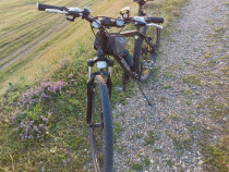 Bicicleta Omega Dominator jante 29 inch
