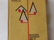Incalzirea grupurilor mici de locuinte, Constantin Luta,1978