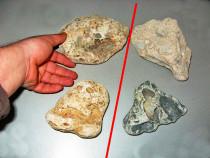 Pietre ornare acvariu / terariu (naturale marine) - set ~2kg