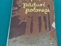 Păduri poloneze/ i. opatoșu/1945