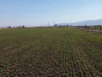 Terenuri suprafață totală 10.400 mp, mun. Codlea,jud. Brasov