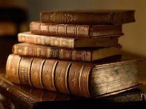 Meditații limba și literatura romană drept poliție bac