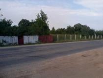 Teren 3 hectare Corabia Olt la 300m de Dunare