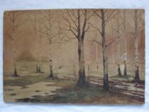 Peisaj-acuarela 1916;pictor rus