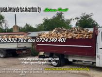 Carbune lignit si lemne de foc