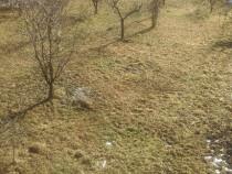 Casa+teren 2400 mp valenii de munte nord