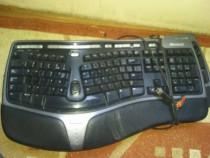 Tastatura microsoft profesionala