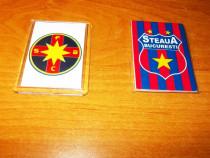 Magnet Steaua Bucuresti / FCSB