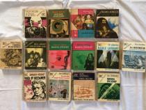 Lot de 14 volume de la editura eminescu colectia clepsidra