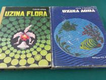 Lot 2 cărți copii: uzina flora, uzina aqua/tudor opriș, miha