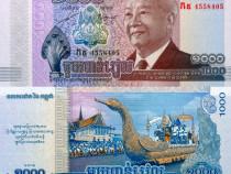 Lot 5 bancnote cambodia 2012-2016 - unc