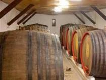 Vin alb si rosu, servit direct din crama,calitate garantata!