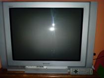 Televizor Panasonic Tau TX-29PM1P 72 cm