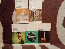 Brancusi carti despre (5 vol)