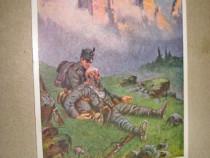 A593-WW1-C. Postala Imp. Austro-Ungar-Tirol soldat camararad
