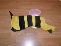 Costum carnaval serbare albina pentru catei marime M