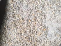 Cereale - Grâu/Porumb/Orz/Uruiala/Mazăre