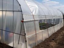 Solar de gradina, sera profesionala, pentru legume si flori