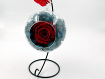 Hortensie Naturala Criogenata si Trandafir Natural Criogenat
