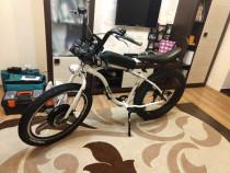 Bicicleta electrica E-bike Pegas