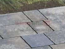 Pavaj appia antica ondulat 10x20x6 cm,autoblocant,pietonal