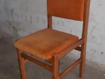 Scaune din lemn, tapitate